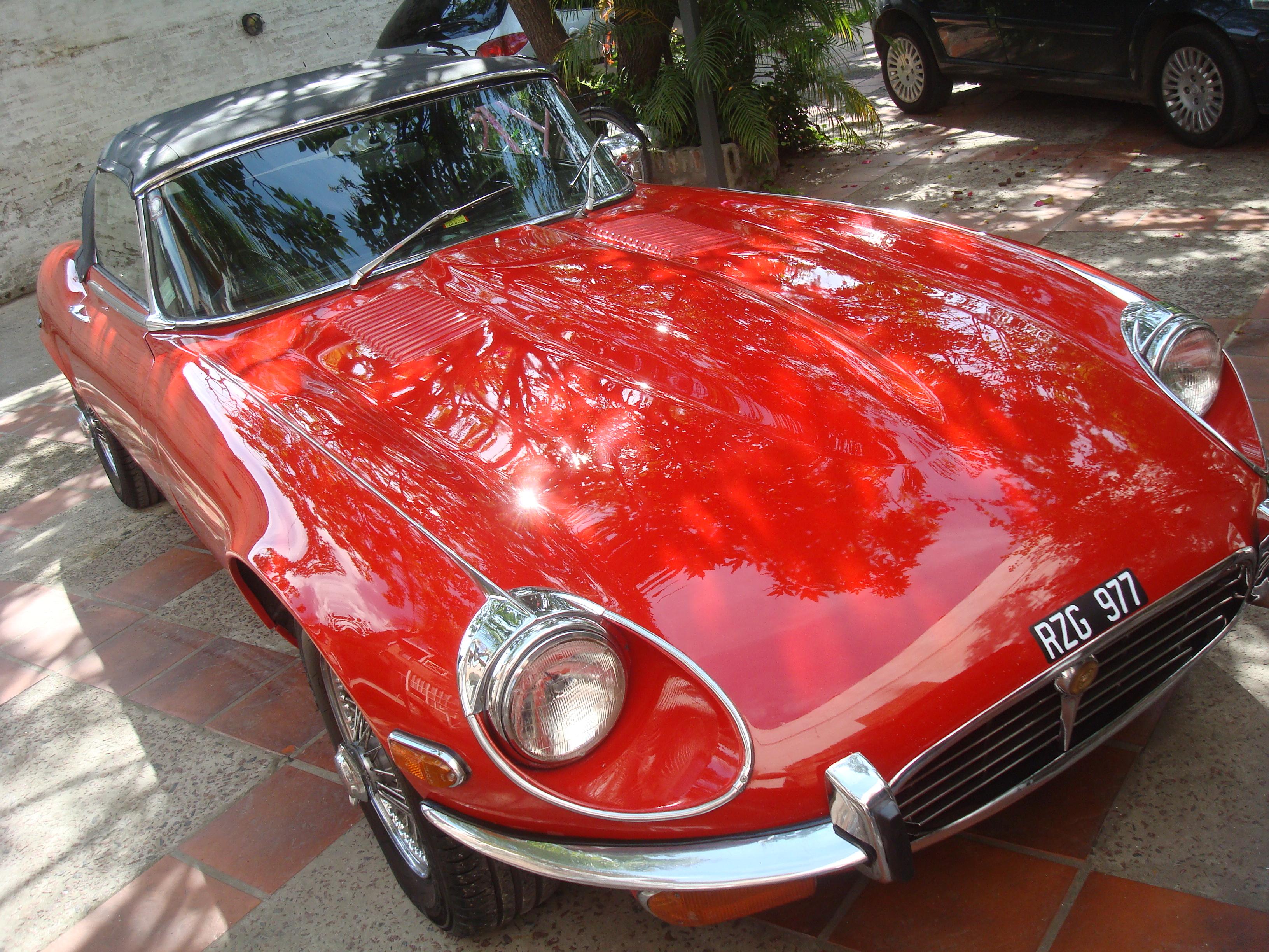 Capot jaguar 1961