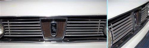 Repuesto Parrilla Torino Coupé Sedán