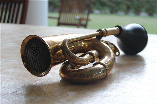 Part Horn Bronze
