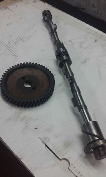 Part Tree camshaft and gears