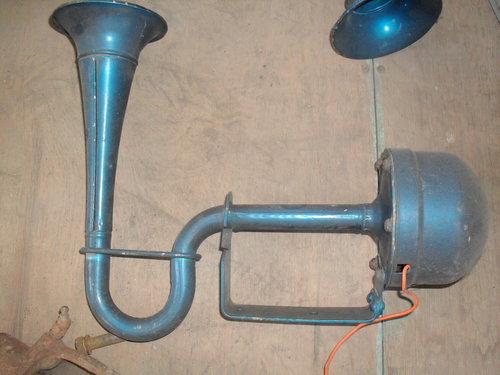 Part Horn Rare Curve