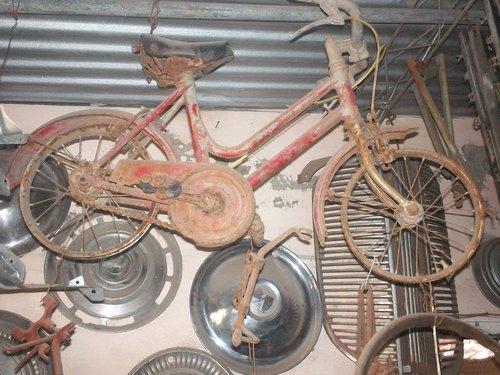 Part Bike Girl