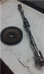 Tree camshaft and gears