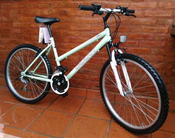 Bike Verdeagua R26 MTB