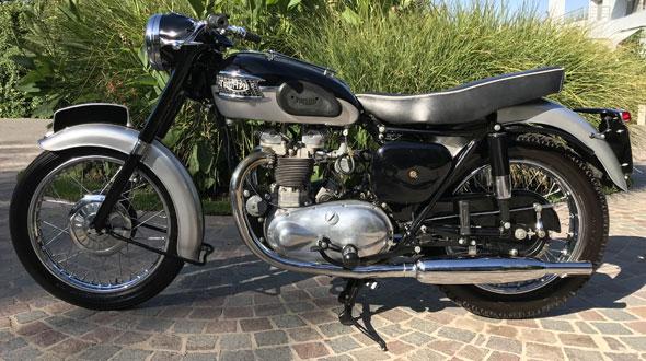Triumph T100 1959