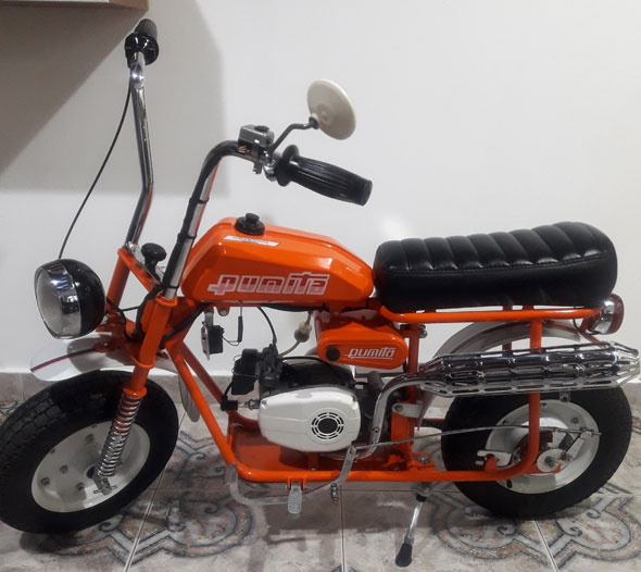 Pumita 1979