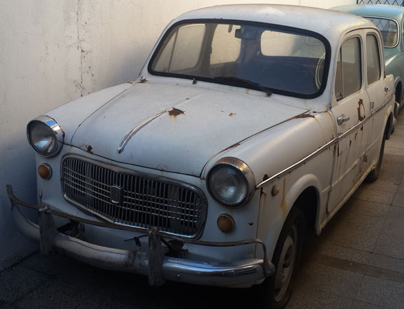 Auto Fiat 1100 1961/62
