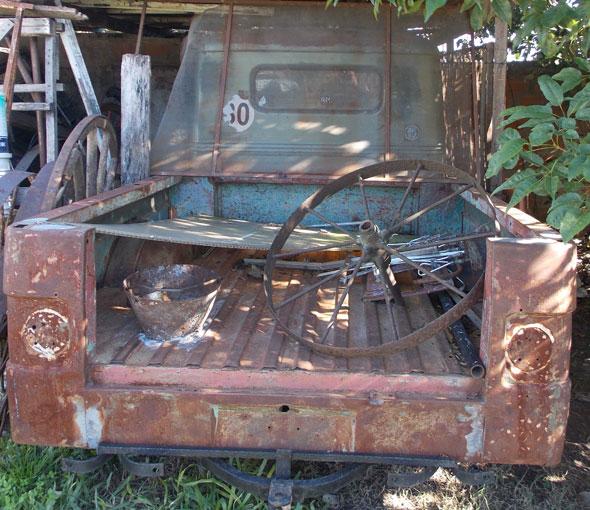 Car Jeep Baqueano