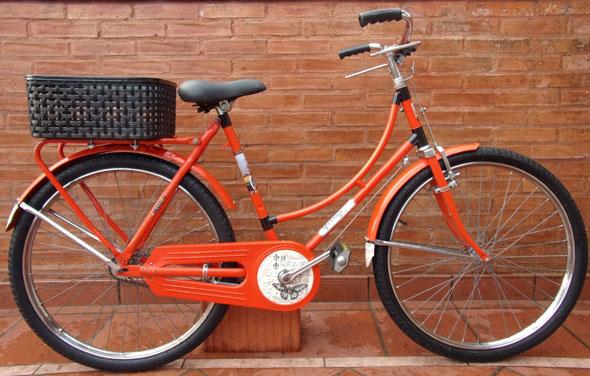 Bicicleta Estilo Inglés R26 Decorada