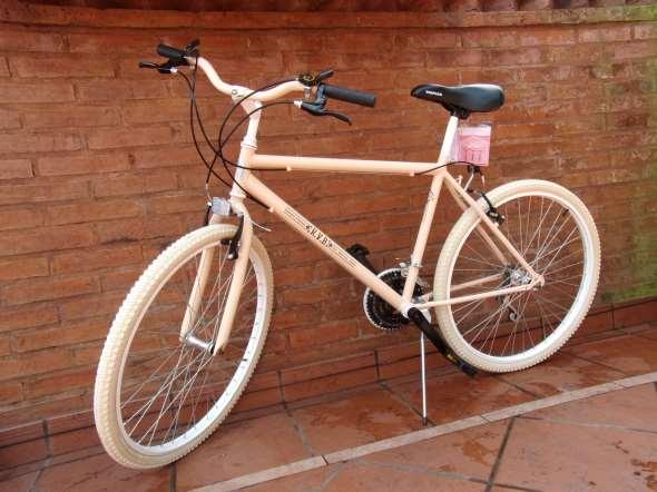Bicicleta Mtb Salmón R26