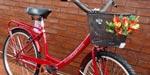 Bicicleta Paseo Malva R26