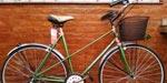 Bicicleta Paseo Vintage Rose R28