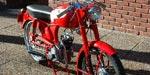 Ducati 65 1951