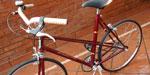 Bicicleta Carrera Rodado 20 Lucerna