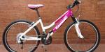 Mountain Bike Kawasaki Rodado 26
