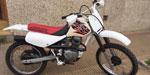 Honda XR 100 1999