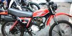 Honda XL 1981