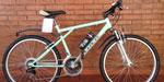 Mountain Bike Olmo Safari 26