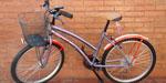 Bicicleta Paseo Olmo 24