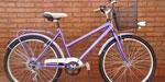 Bicicleta Paseo Rodado 26 Deco