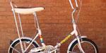 Bicicleta Plegable Fiorenza R16