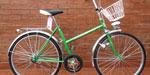 Bicicleta Desmontable R24