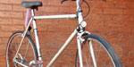 Bicicleta Estilo Fixie R24 Lucerna