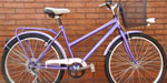 Bicicleta Paseo Birdie R26