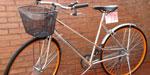 Bicicleta Sport Lady R28